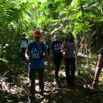 Zusammen entdecken wir den Regenwald der Nasoindianer