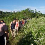 Im Gaensemarsch folgen wir Raul in den Regenwald
