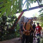 KUSis im Dschungel - KG Bayamo