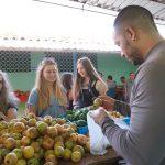 Auf dem Bauernmarkt kann man die frische Ware direkt vom Bauer kaufen - KG Sancti Spiritus
