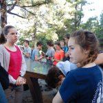 Auf dem Weg zum Teide - Kurze Pause im Kiefernwald
