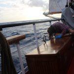 Bootsmanns-Praktikum - Hanna beim Malern