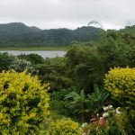 Expi-Gruppe Grand Etang National Park (rainforest) I