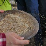 Maura trennt die Spreu vom Reis