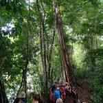 Tour durch den Nationalpark