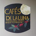 Die Kaffeeplantage