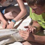 Die Praktikanten von Bootsmann Laurent lernen das Nähen und Reparieren der Segel