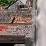 Hier wird Muskatnuss und Kakao getrocknet...