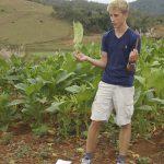 Auf der Tabakplantage in Viñales