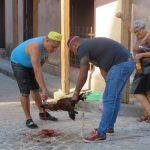 Und mal sieht man sogar eine Schlachtung auf der Straße