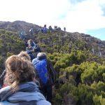 Die Besteigung des Pico – (hin)auf gehts