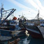 Fischerhafen von Safi